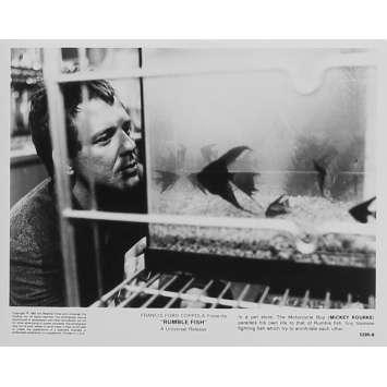 RUSTY JAMES Photo de presse 5295-6 - 20x25 cm. - 1983 - Matt Dillon, Francis Ford Coppola