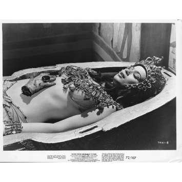 LA MOMIE SANGLANTE Photo de presse - 20x25 cm. - 1971 - Andrew Keir, Seth Holt