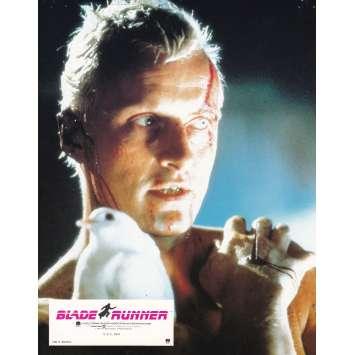 BLADE RUNNER Original Lobby Card N06 - 9x12 in. - 1982 - Ridley Scott, Harrison Ford