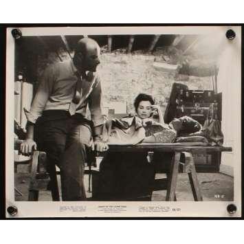 NUIT DES MORTS-VIVANTS Photo de presse N3 '68 George Romero living dead