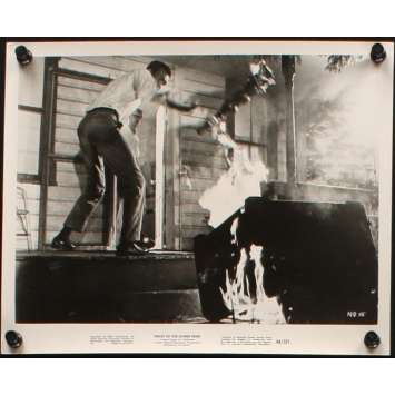 NIGHT OF THE LIVING DEAD 8x10 still N1 '68 George Romero zombie classic, great images!