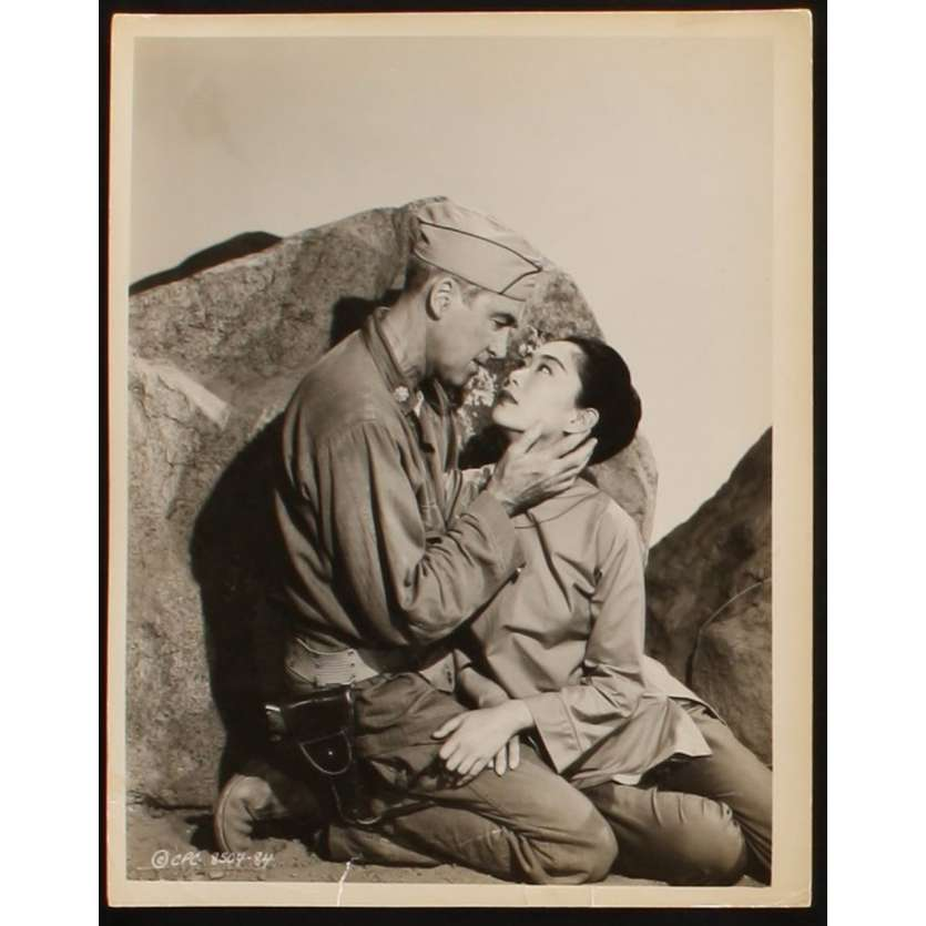 COMMANDO DE DESTRUCTION Photo presse 20x25 US '60 James Stewart