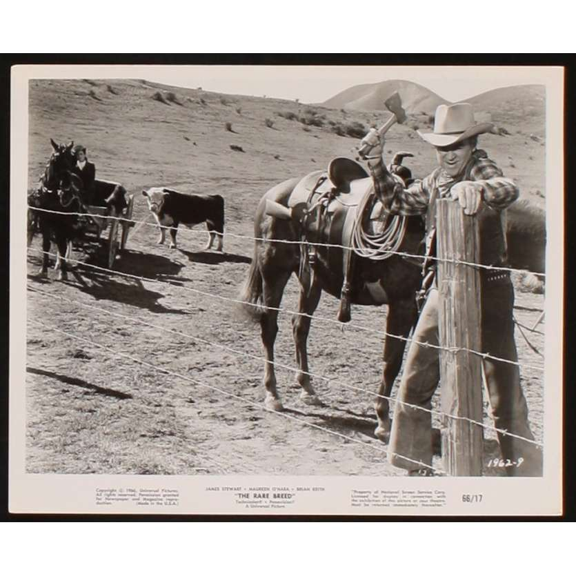 RANCHO BRAVO Photo presse 20x25 US '66 James Stewart, O'Hara